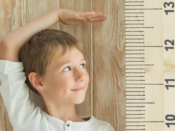 עקומות גדילה - ילד מודד גובה
