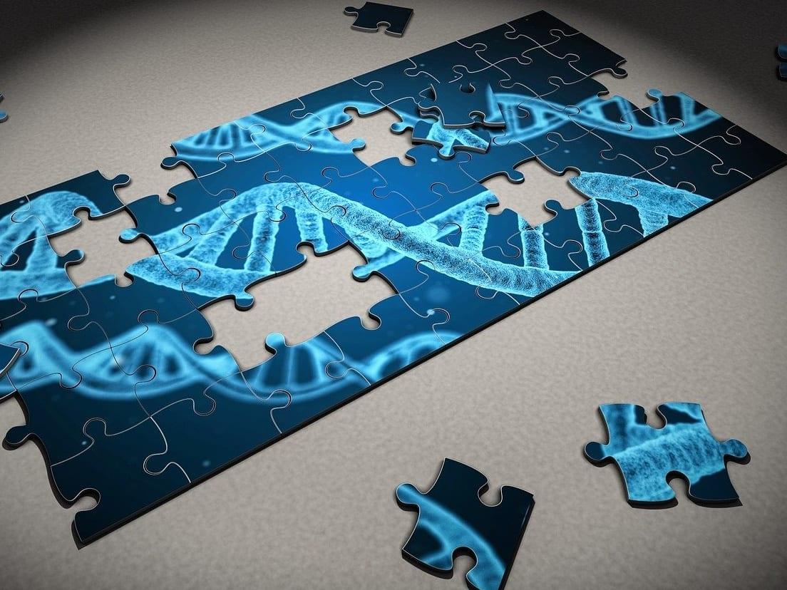 בדיקת שבב גנטי